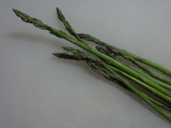 アスパラガス 農業