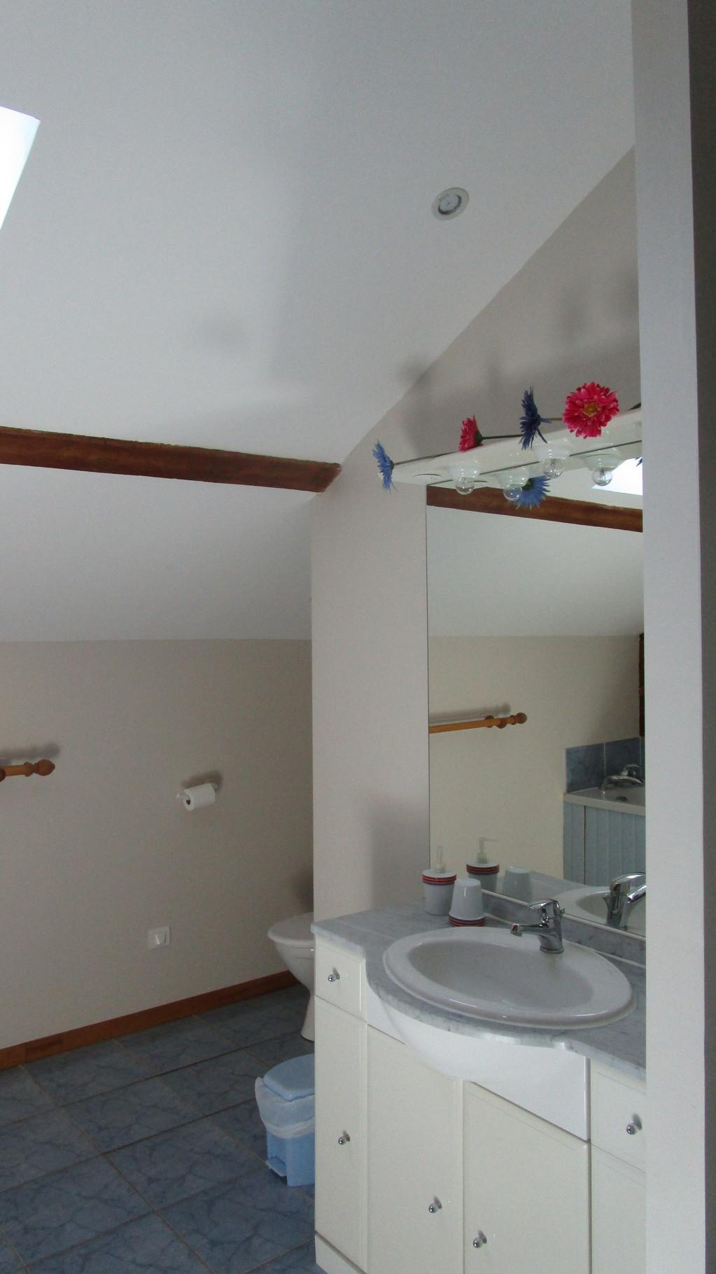 salle de bains , Gîtes et chambre d'Hôtes Peyrecout Tarn Cordes Albi