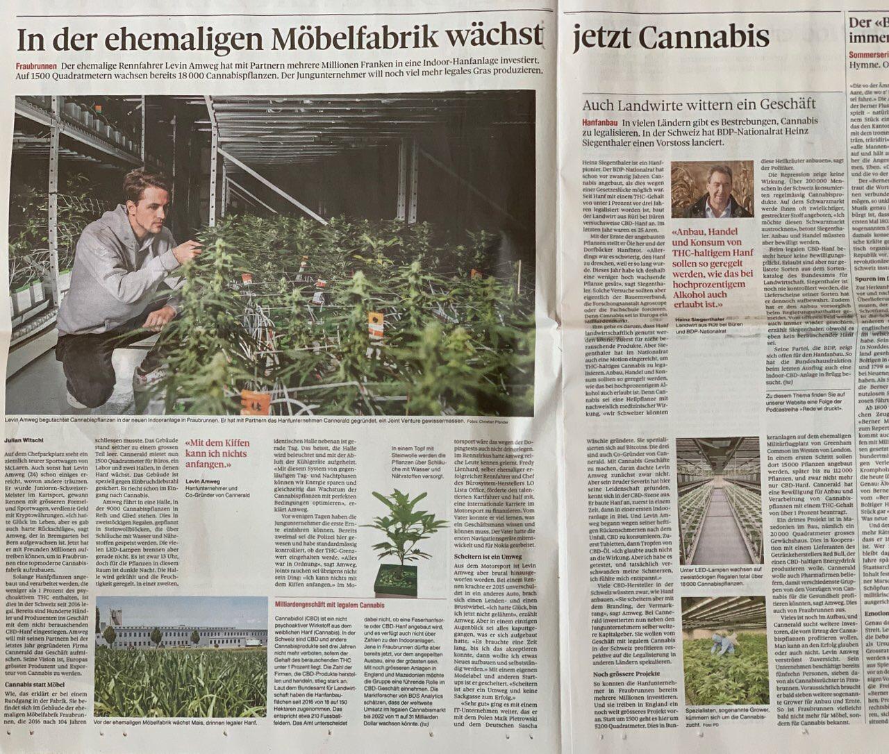 Cannerald in der Berner Zeitung