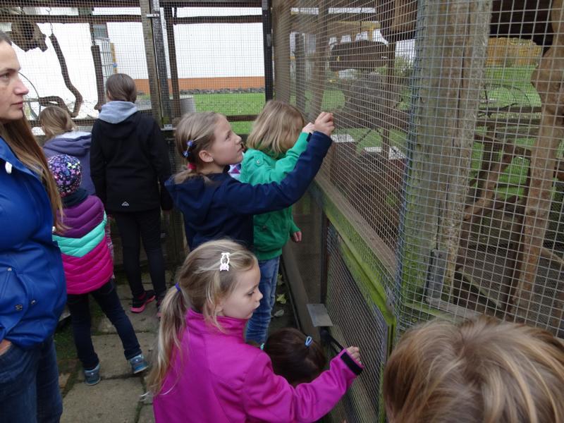 Highlight des Tages: Die Tiere aus der Hand füttern.