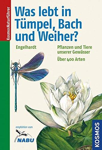 Autoren:  Wolfgang Engelhardt, Peter Martin, Jörg Pfadenhauer, Klaus Rehfeld