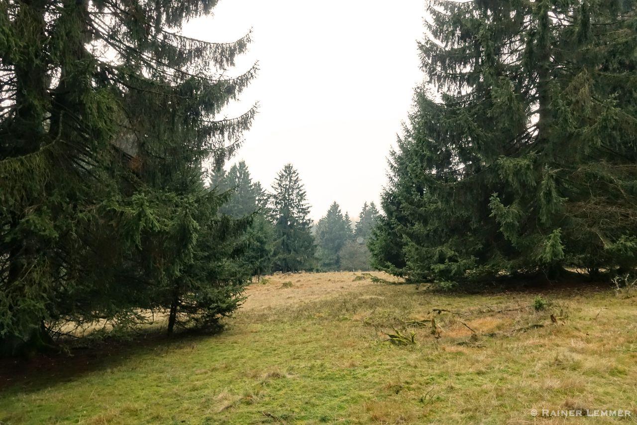 Fuchskaute Rundweg
