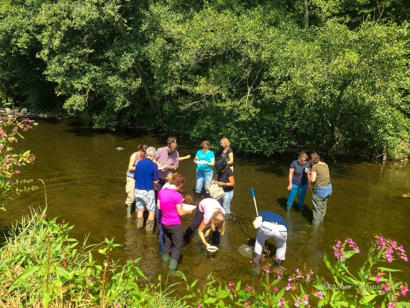 Seminar Gewässerökologie für Naturschutzpraktiker