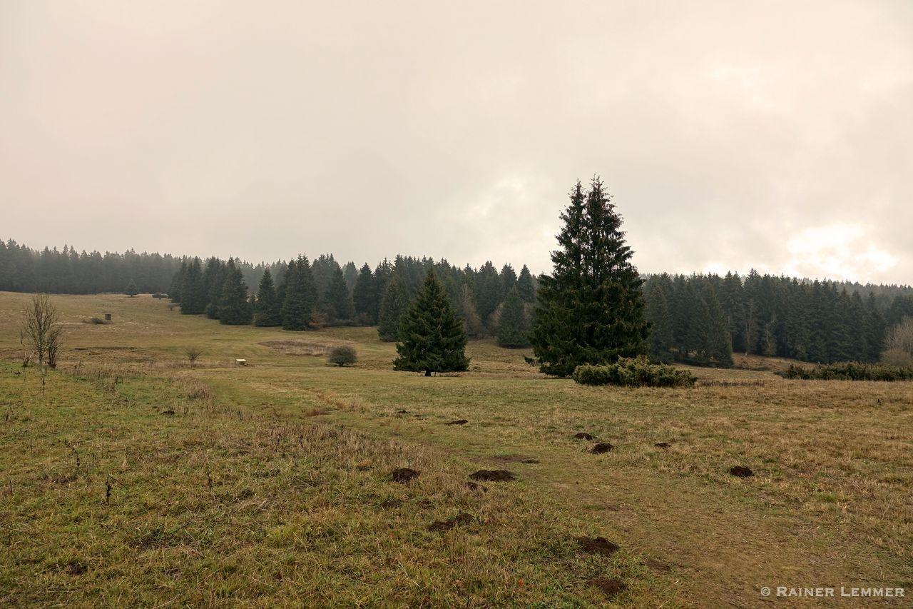 Naturschutzgebiet Fuchskaute