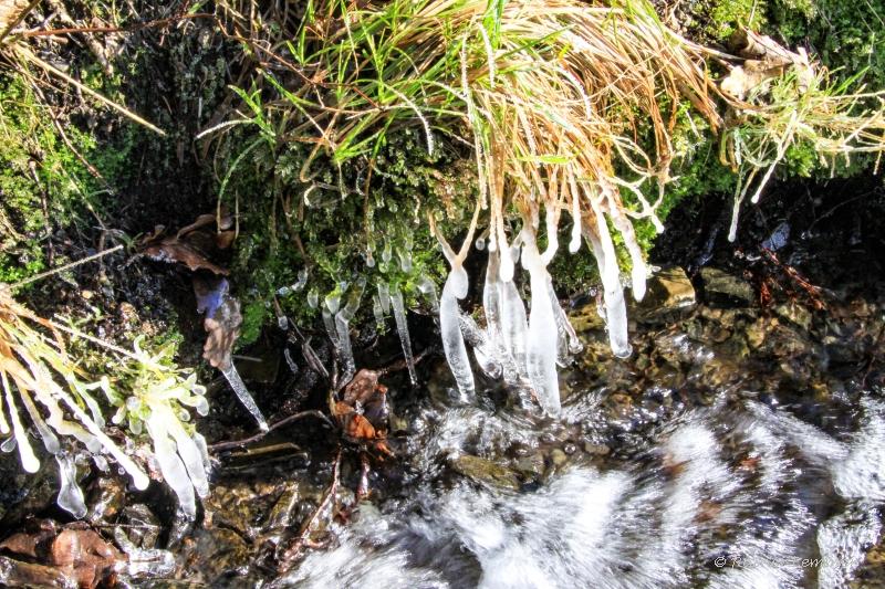 Frostiger Bach quert den Naturpfad Weltende