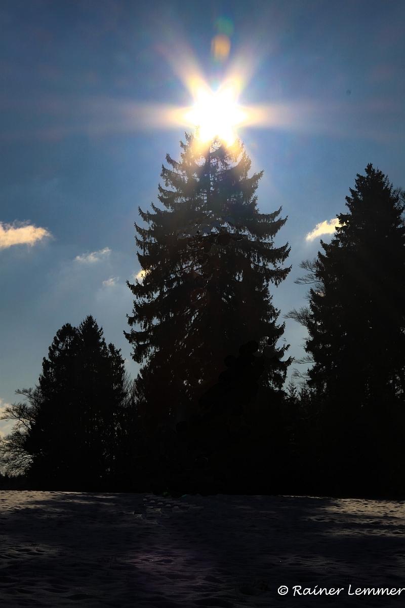 Winterlandschaft bei Rotenhain  - Tannenbaumbeleuchtung