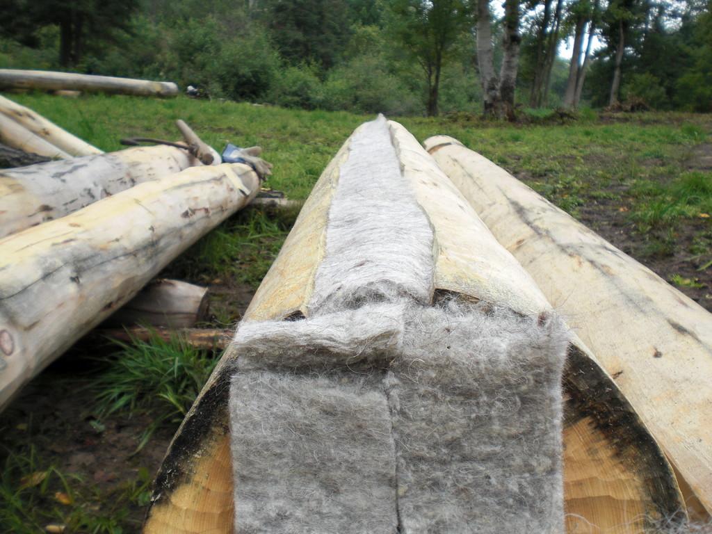Die Schafwolle im Log