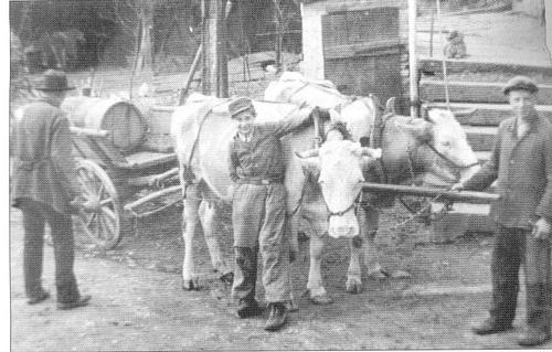 Mist- und Pfuhlfahren in Kreidach (ca. 1940)
