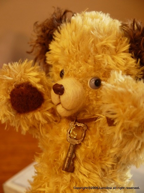 SOOTY BEAR (阪急うめだ本店イベント)