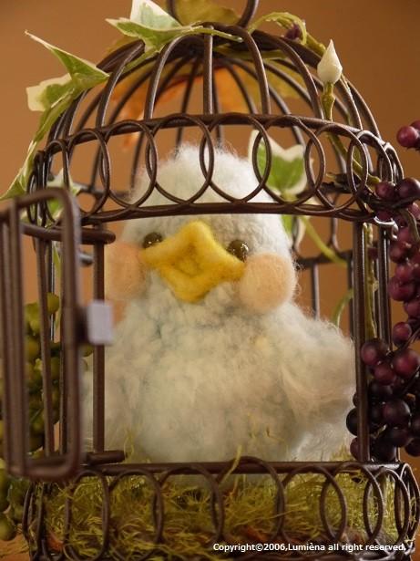 青い鳥petit 2013ver. (阪急うめだ本店イベント)