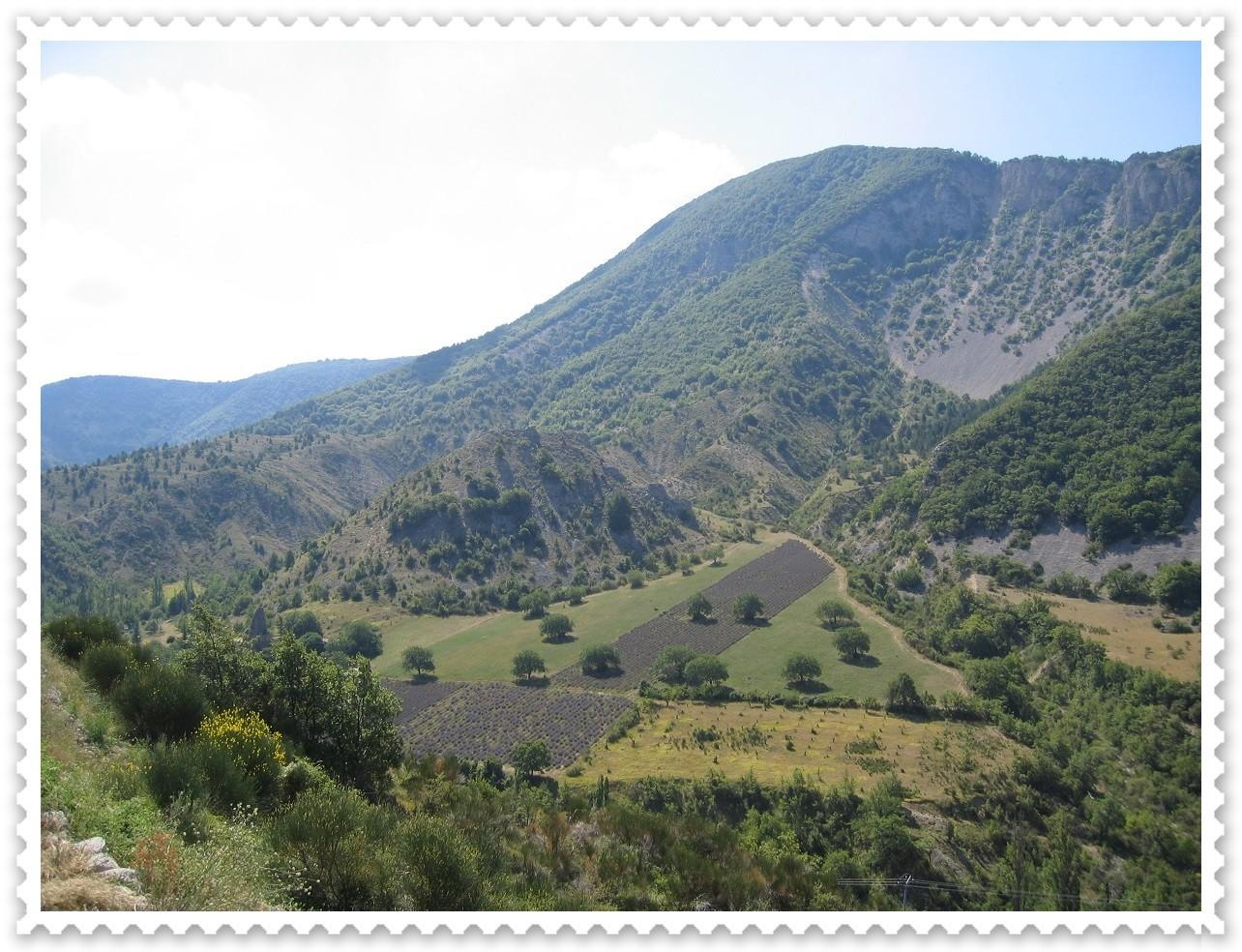 Provence-Impression