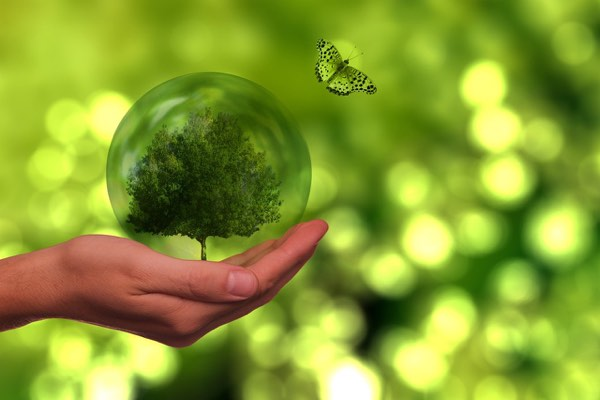 Nachhaltig transparent