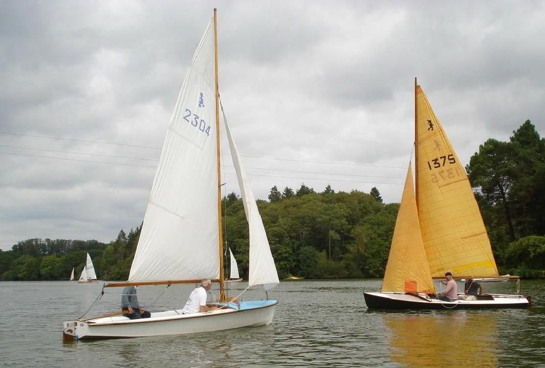 Caneton Aubin en flottille, en 2e plan