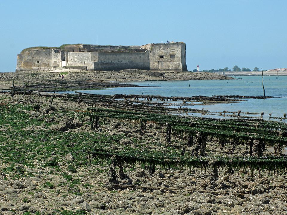 Visite guidée de Fort Enet près de Fouras