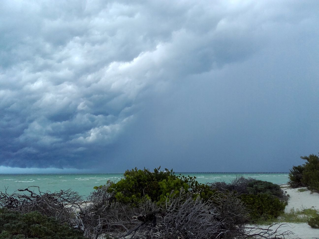 storm in paradise