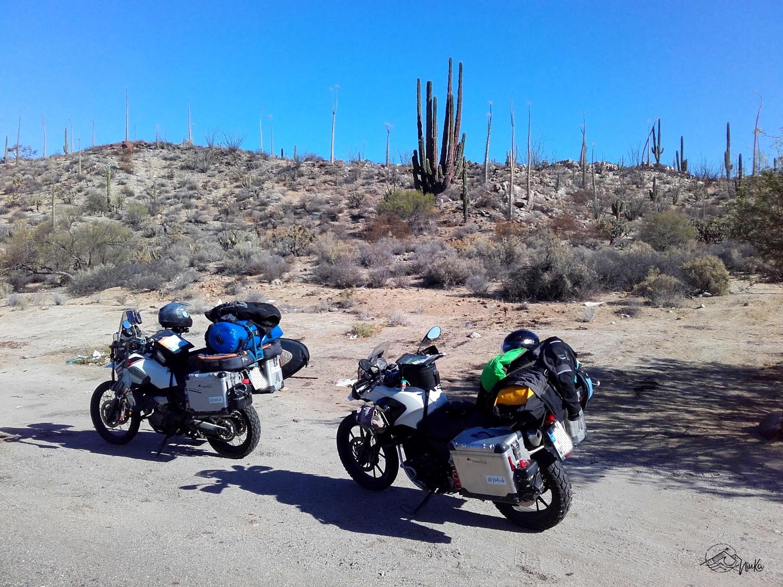 Fahrt durch den Norden der Baja