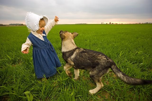 Kleines Mädchen mit blauem Kleid spielt mit einer Katze auf einer Wiese auf dem Lande in Deutschland im Urlaub auf dem Bauernhof.