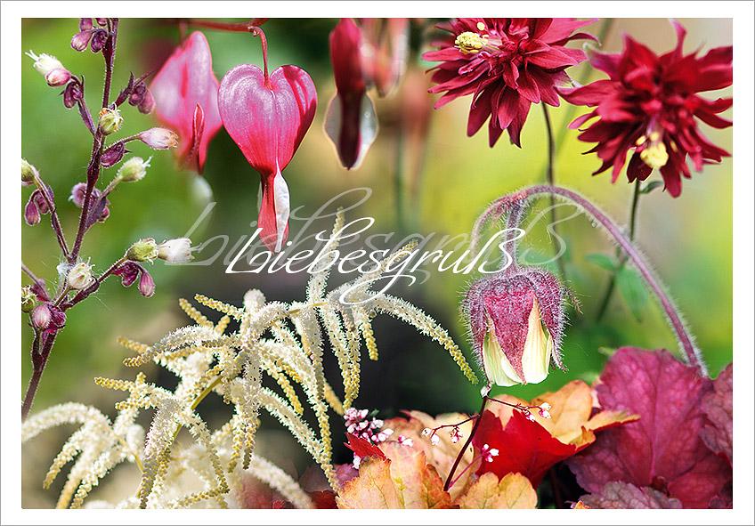 Gräber mit Blüten und Blättern in warmen Farben für Schatten und Halbschatten