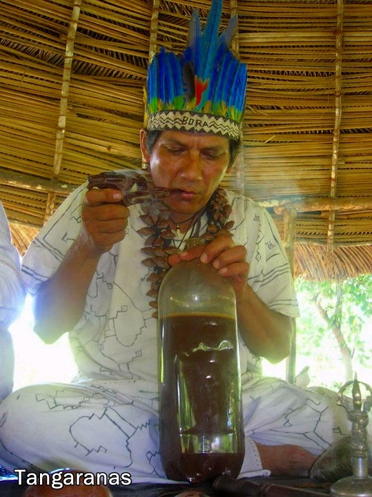 ceremony ayahuasca