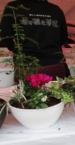 【園芸】寄せ植え華道
