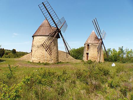 Mas-Saintes-Puelles. Les moulins de Laffont récemment restaurés se dressent majestueusement sur la colline de l'Olive. Crédit photo : Pierre Mercié