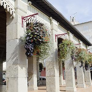 Du côté de Castelnaudary (CL234)