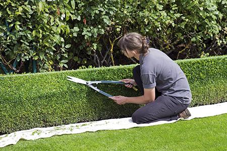 Opter pour un jardinier à domicile peut grandement faciliter la vie pour des travaux ponctuels. crédit photo : Pixabay©Ron Porter