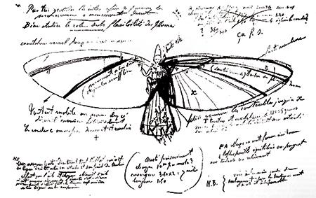 Fig.3 : L'oiseau en plumes (croquis de Clément Ader)