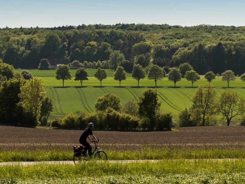 Unser Tipp für 2021: Fahrrad-Urlaub in Billerbeck
