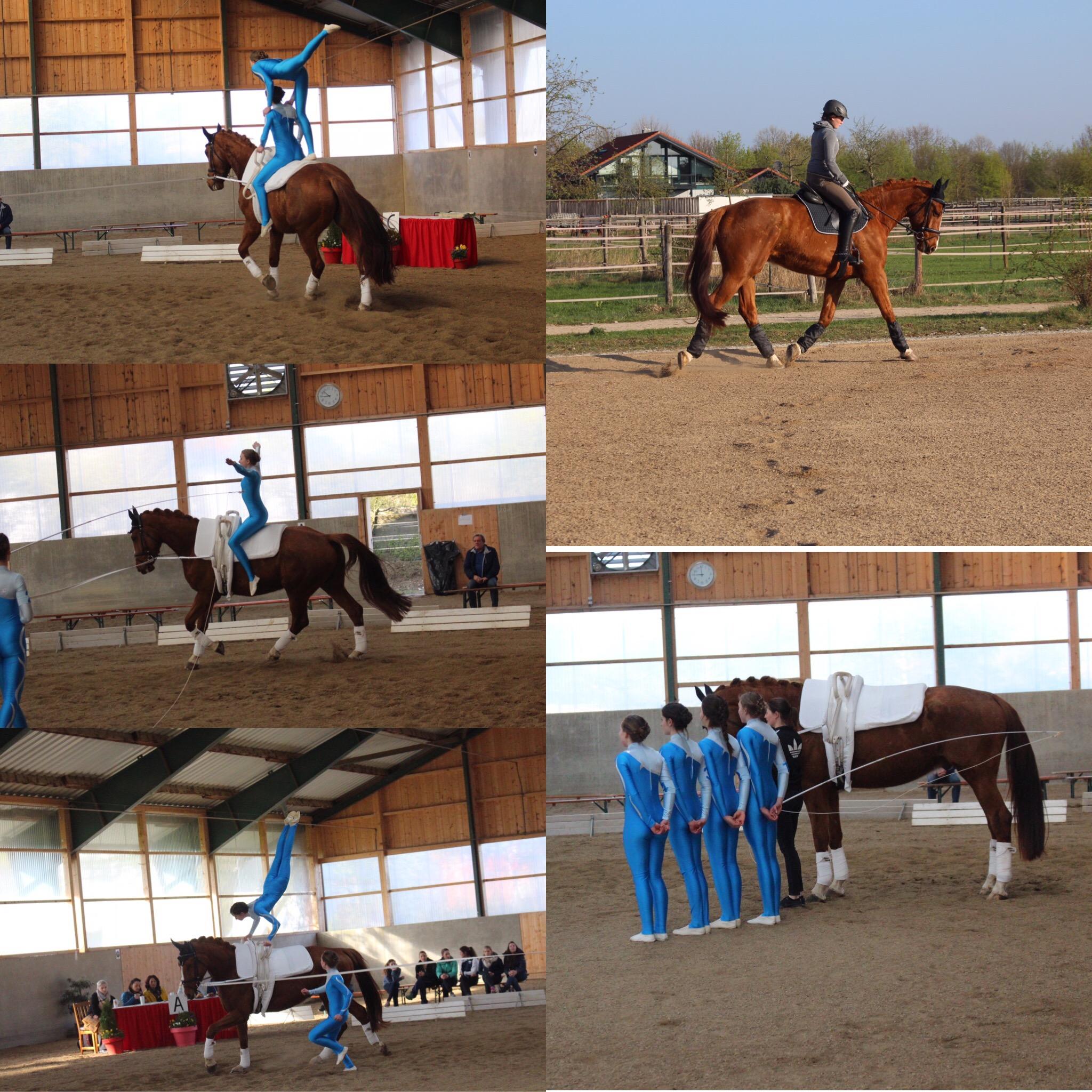 Pferdeprüfung Lohe 2 mit Artan - Turnier Vaterstetten