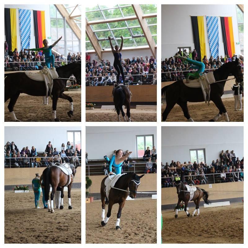 Pferd International 29.05