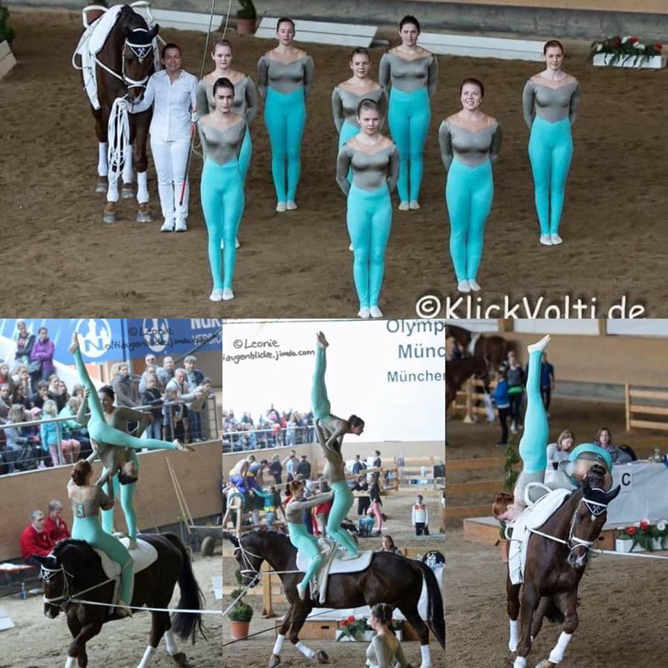 Lohe 1 - Pferd International