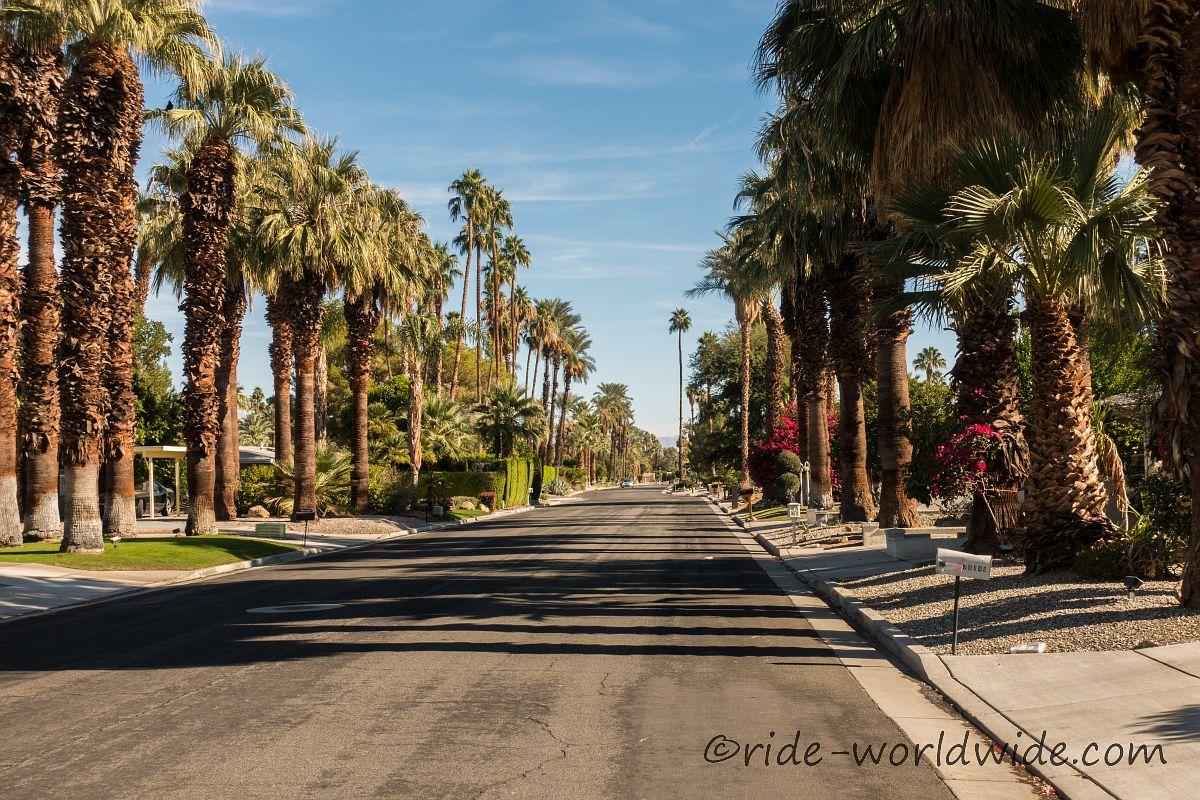 Villenviertel, alles grünt und blüht und das mitten in der Wüste...