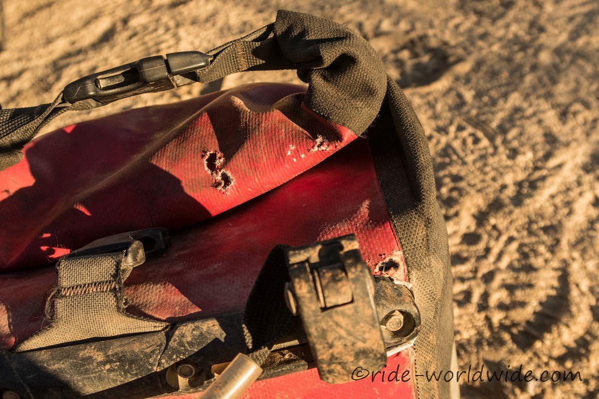 Attacke der Wüstenmaus, hat uns einen halben Tag gekostet um alle Löcher zu flicken