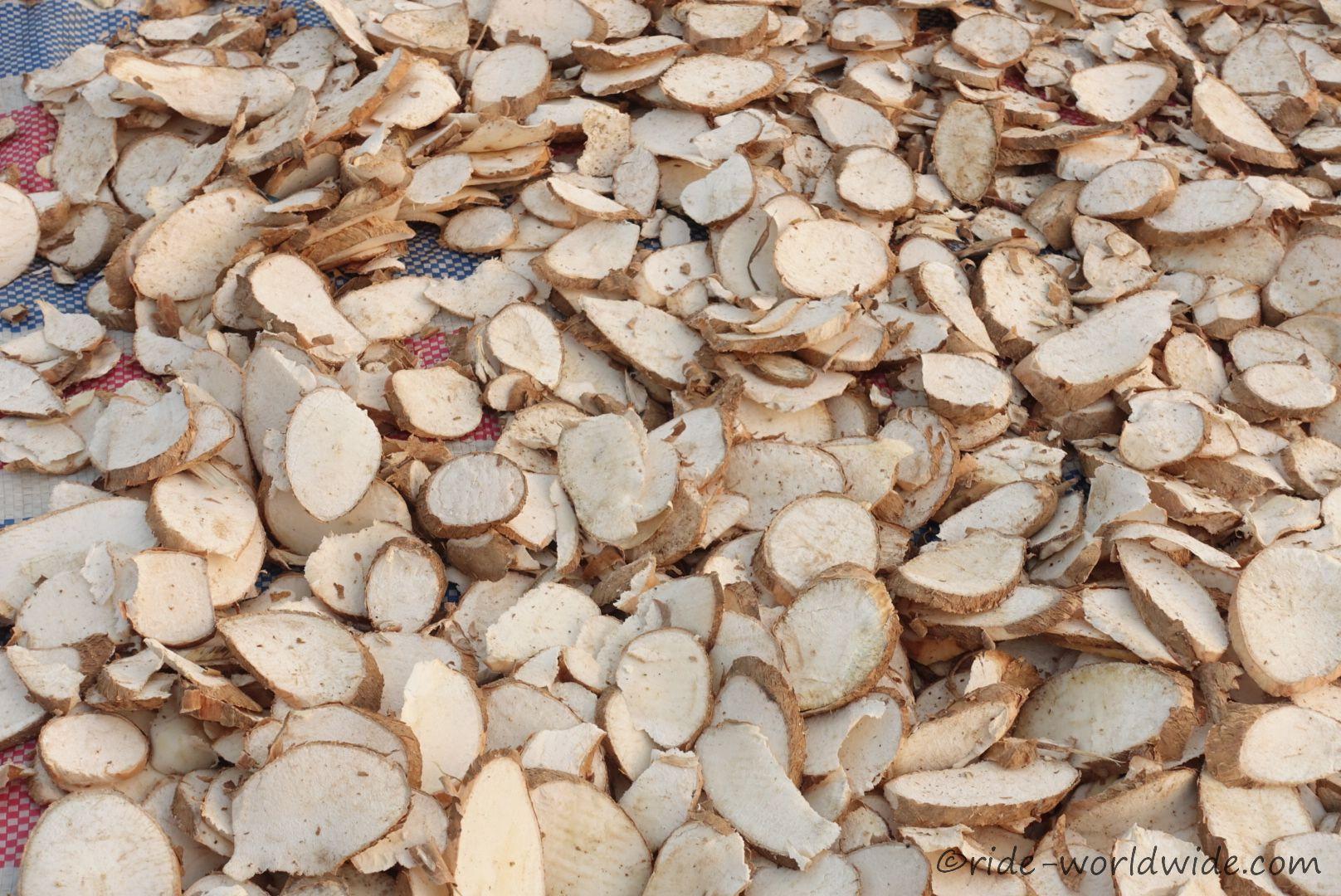 Maniok liegt überall zum trocknen aus