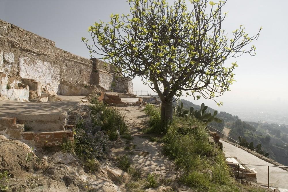 Restauration du pic de Turo de la Rovira (Espagne), 2011 - PRIX EX-AEQUO 2012