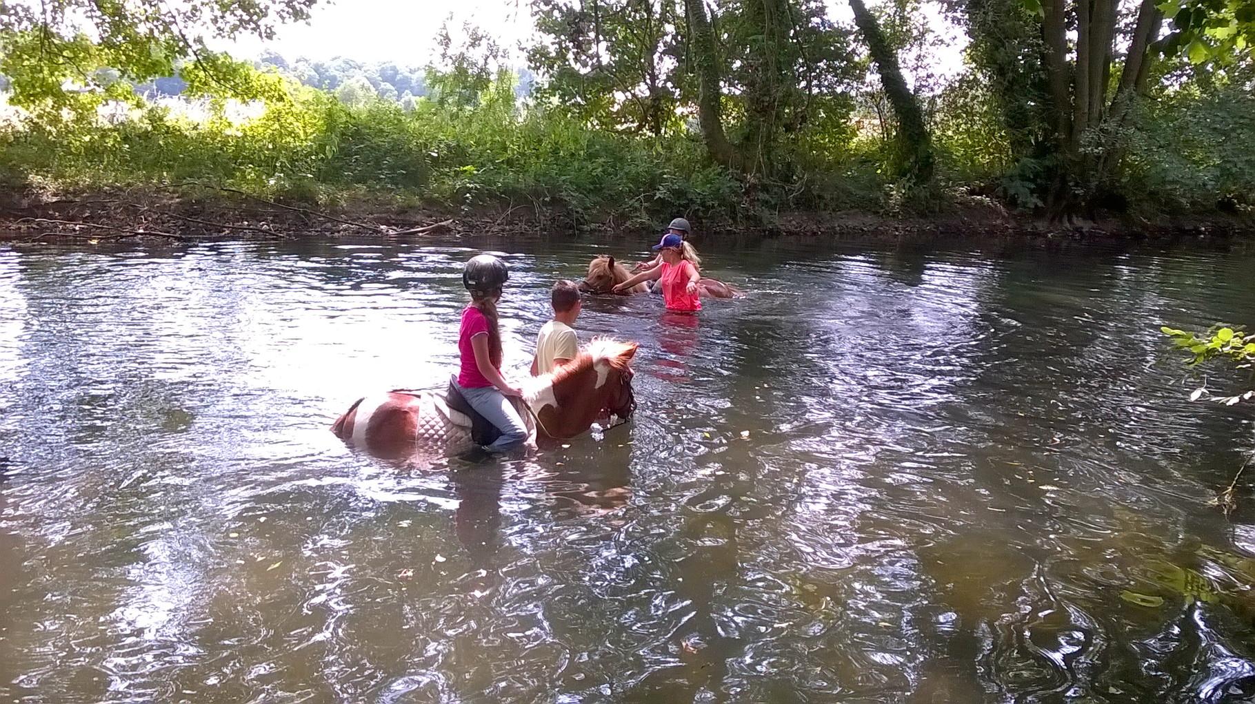 Nager avec un poney, le rêve de bien des cavaliers...