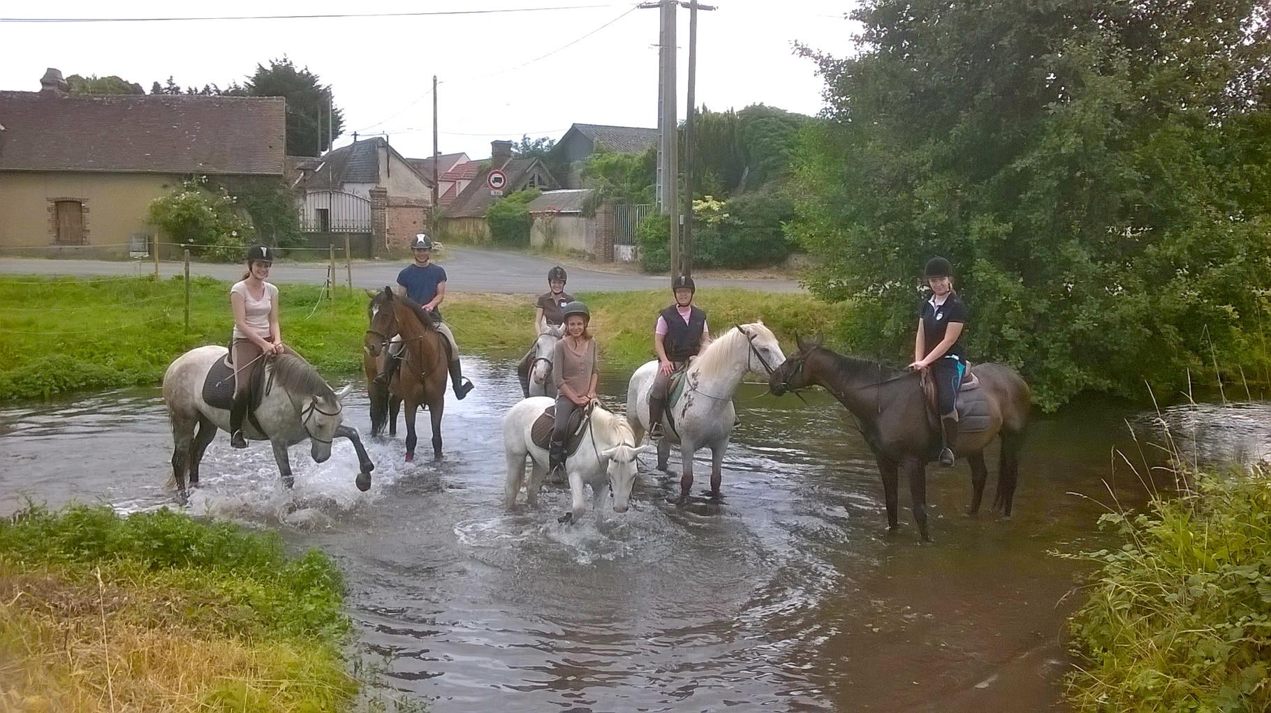 6 cavaliers profitant de la fraîcheur de l'eau