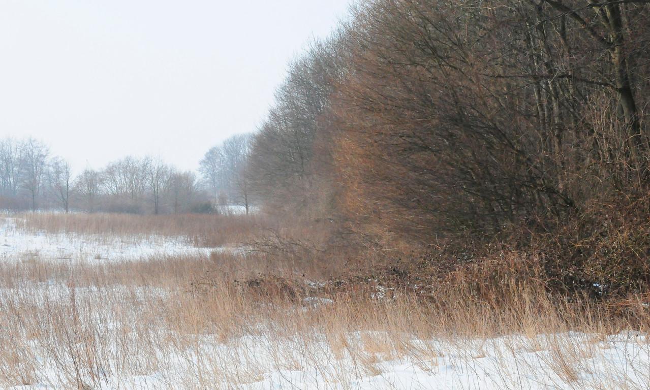 Brodten, Februar 2010