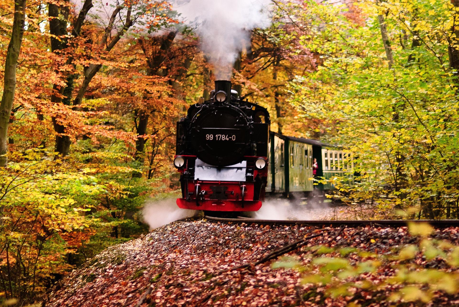 Rasende Roland im Herbst