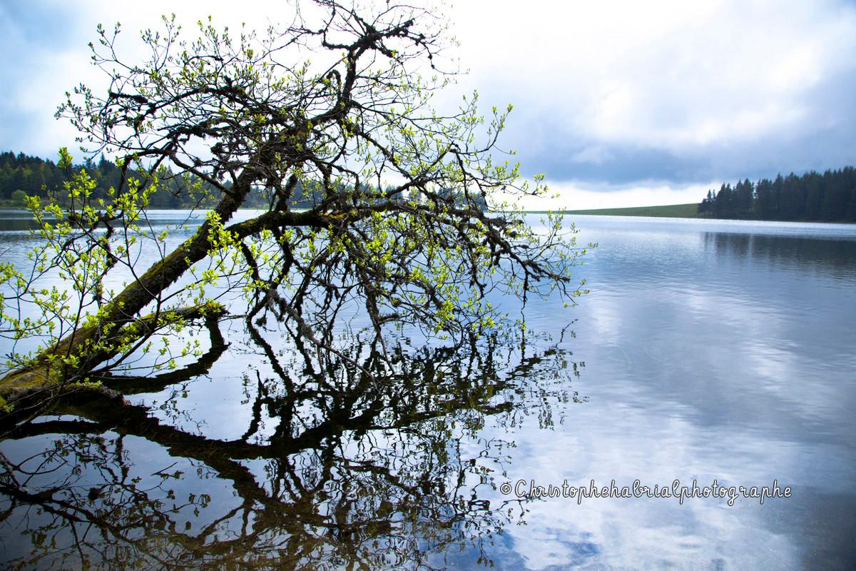 Lac Servières - Auvergne