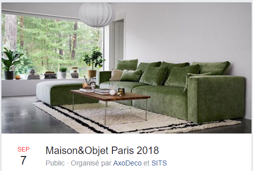 photo exclusif AxoDeco et SITS pour M&O septembre 2018;  Isabelle Mourcely, décoratrice UFDI 37, Tours 37000 Chinon 37500