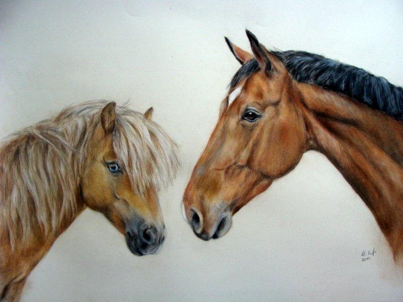 gemeinsames Portrait eines Pferdes und Pony auf Malkarton gemalt