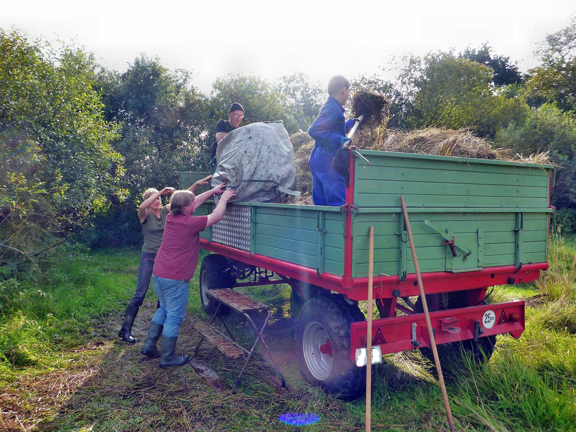 Vorbereitung der Abfuhr des Mahdgutes zum Kompostplatz.
