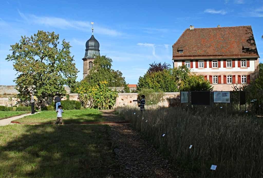 Hohenzollernburg/ Burgkräutergarten mit Blick auf denn Turm der Pfarrkirche>Markgrafenkirche< und Pfarrhaus