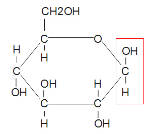 Struktur der betta-Glucose.