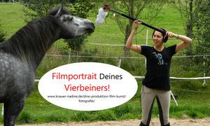 Filmtierportraits Deines Vierbeiners! Dine-Produktion Film&Kunst schafft Erinnerungen!