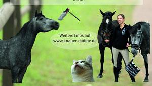 Filmangebote, Tierportrait, Fotografie, Film von Dine-Produktion Film&Kunst