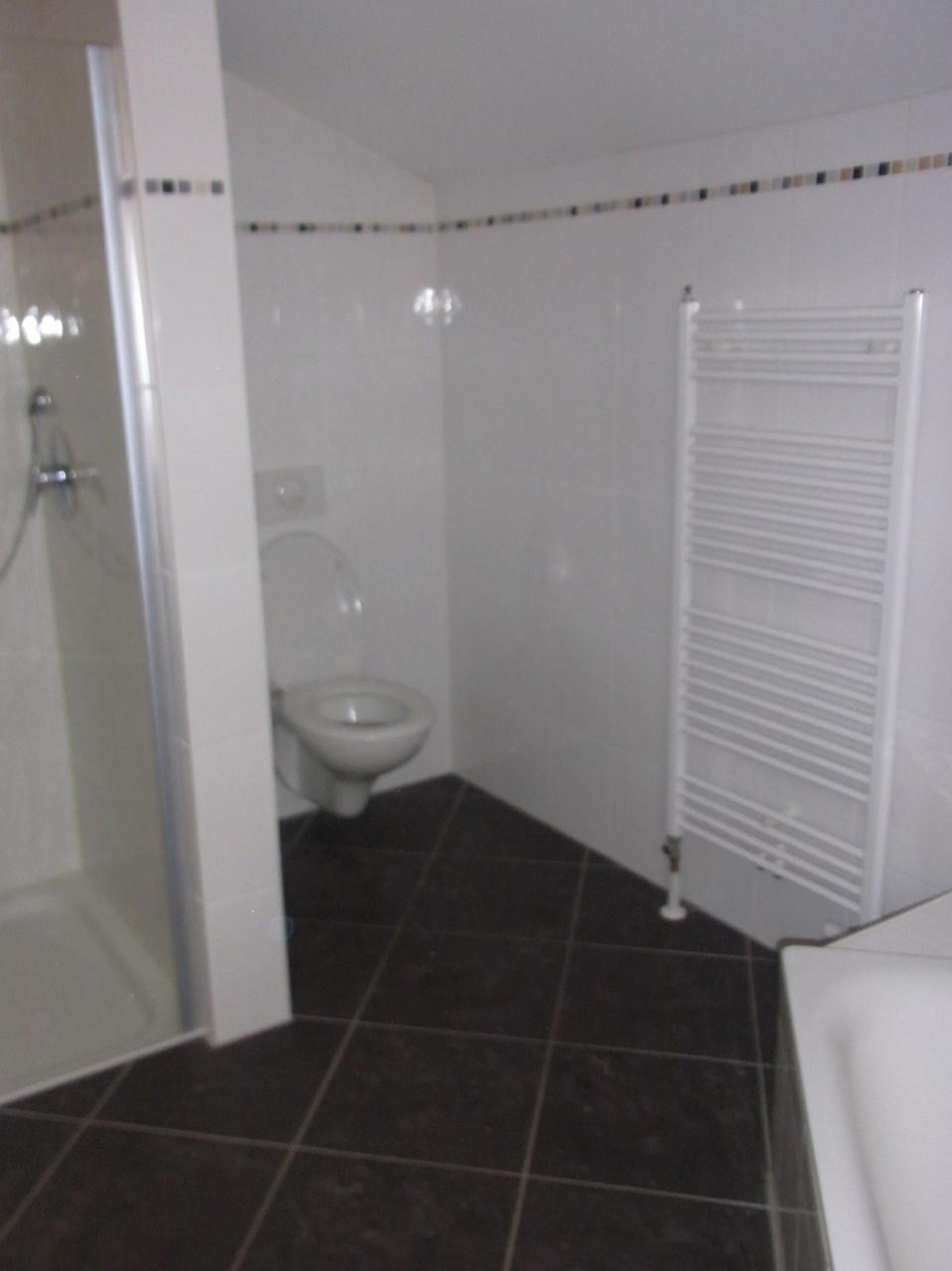 Vorher: Dusche im Eingangsbereich
