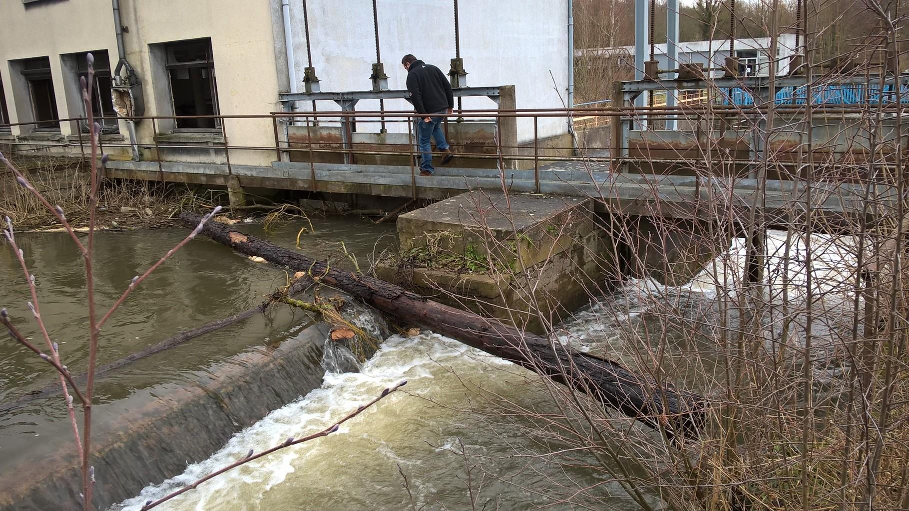 arbre coincé dans le vannage de l'usine de Villers Saint Sepulcre